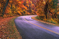 Road Through Fall Mountains