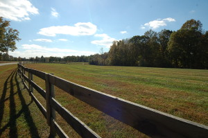 Pasture in Summerfield, NC