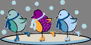 ice skating birds
